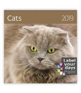 Nástěnný kalendář Cats 2019