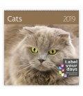 Wall calendar Cats 2019