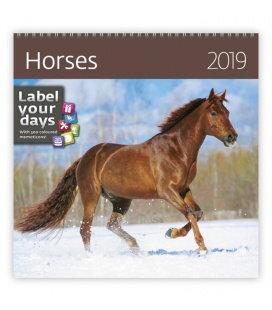 Nástěnný kalendář Horses 2019