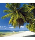 Wandkalender Tropical Beaches 2019