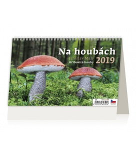 Stolní kalendář Na houbách 2019