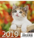 Stolní kalendář Mini Kittens 2019