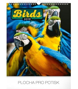 Nástěnný kalendář Ptáci 2019