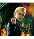 Nástěnný kalendář Harry Potter 2019
