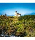 Wall calendar Lighthouses 2019