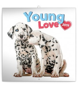 Wall calendar Young Love 2019