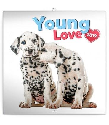 Nástěnný kalendář Young Love 2019