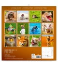Wall calendar Keep Smiling 2019