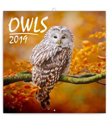 Wall calendar Owls 2019