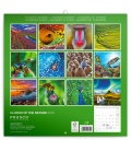 Wall calendar Colors of the Nature 2019