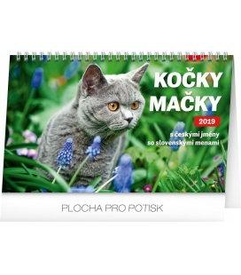 Stolní kalendář Kočky – Mačky CZ/SK se jmény koček 2019