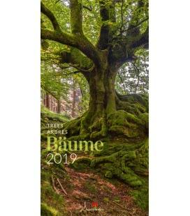 Nástěnný kalendář Stromy / Bäume 2019