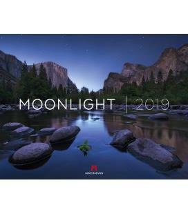 Wall calendar Moonlight 2019