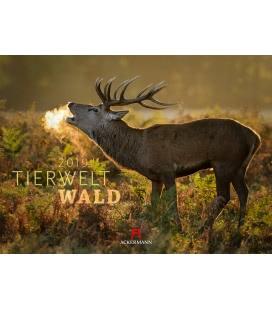 Wall calendar Tierwelt Wald 2019
