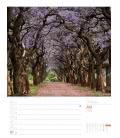 Nástěnný kalendář Jižní Afrika - týdenní plánovač / Südafrika – Wochenplaner 2019