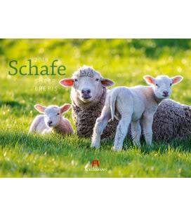 Nástěnný kalendář Ovce / Schafe 2019