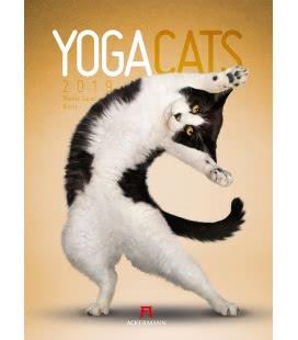 Nástěnný kalendář Yoga Cats 2019