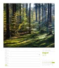 Wall calendar Unser Wald, ein Spaziergang – Wochenplaner 2019