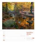 Nástěnný kalendář Krásy lesa - týdenní plánovač / Unser Wald, ein Spaziergang – Wochenpla