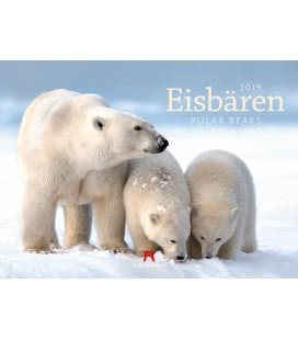 Nástěnný kalendář Lední medvědi / Eisbären 2019