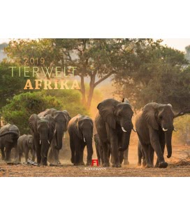 Nástěnný kalendář Fauna Afriky / Tierwelt Afrika 2019
