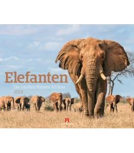 Nástěnný kalendář Sloni / Elefanten - sanfte Riesen 2019