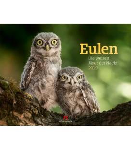 Wall calendar Eulen - weise Jäger 2019