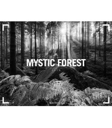 Nástěnný kalendář Mystický les / Mystic Forest – Ackermann Gallery 2019