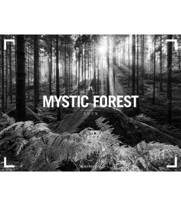 Wall calendar Mystic Forest – Ackermann Gallery 2019