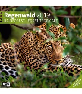 Nástěnný kalendář Deštný prales / Regenwald 2019