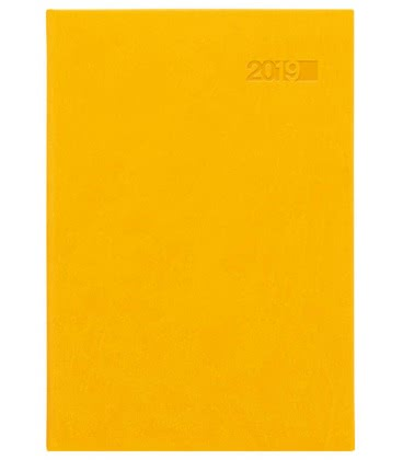 Daily Diary A5 Theia SK 2019