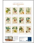 Wall calendar P.-A. Poiteau: Alte Obstsorten 2019
