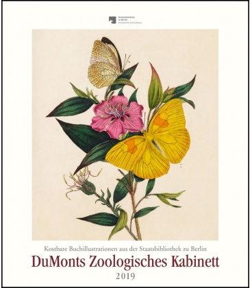 Wall calendar Zoologisches Kabinett: Schmetterlinge 2019