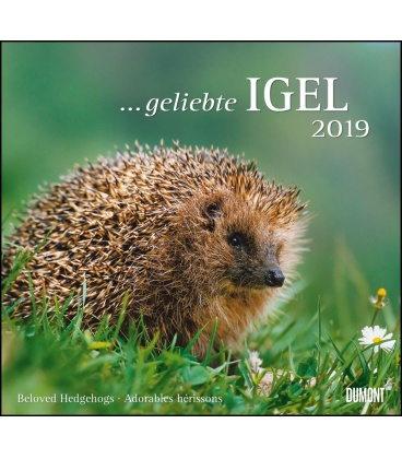 Wall calendar …geliebte Igel 2019