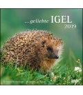 Nástěnný kalendář Ježci / …geliebte Igel 2019