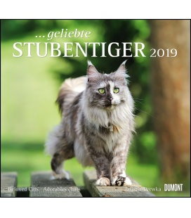 Nástěnný kalendář Kočky / …geliebte Stubentiger 2019