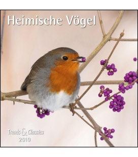 Nástěnný kalendář Ptáci / Heimische Vögel T&C 2019