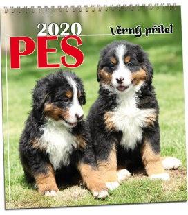 Wall calendar Pes 2020