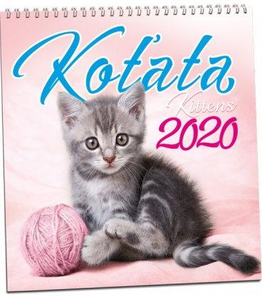 Wall calendar Koťata 2020