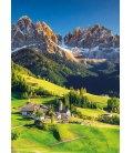 Wall calendar Alpy 2020