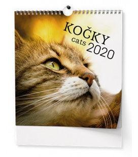 Wall calendar IDEÁL - Kočky 2020