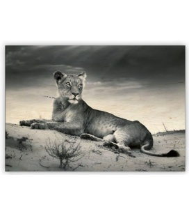 Wall calendar - Wooden picture - Lioness 2020