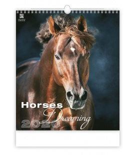 Wall calendar Horses Dreaming 2020