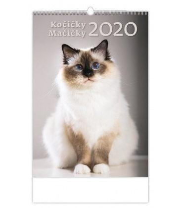 Wall calendar Kočičky/Mačíčky 2020