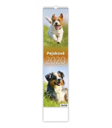 Wall calendar Pejskové - vázanka 2020