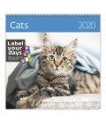 Wall calendar Cats 2020