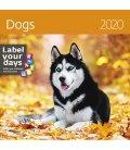 Wall calendar Dogs 2020