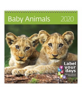 Wall calendar Baby Animals 2020