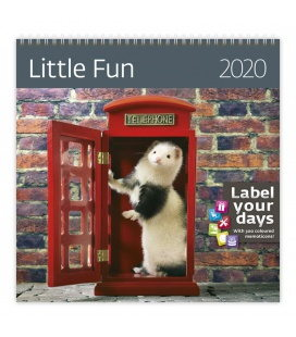 Wall calendar Little Fun 2020