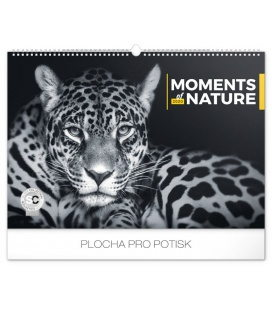 Wall calendar Moments of nature 2020
